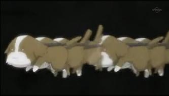 犬 流水の動き