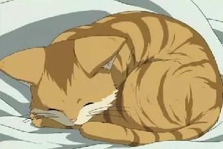 クラナド猫