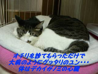 0103yun.jpg