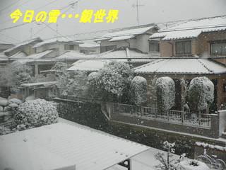0107yuki-1.jpg