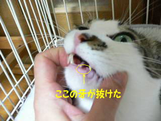 0124yun.jpg