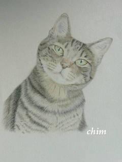 chim0425