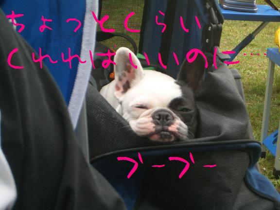 2008050504.jpg