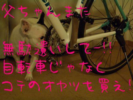 CIMG2359.jpg