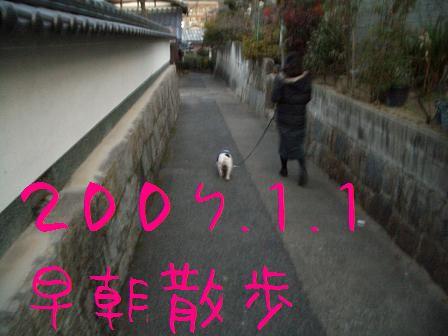 CIMG6605.jpg