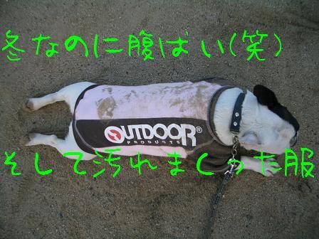 CIMG7821.jpg