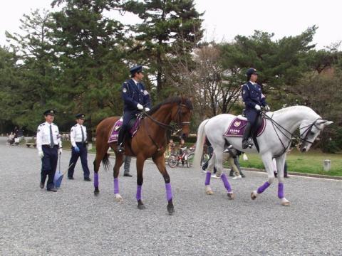 皇宮警察騎馬隊P4132977.jpg