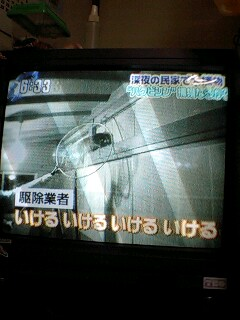 20070206191914