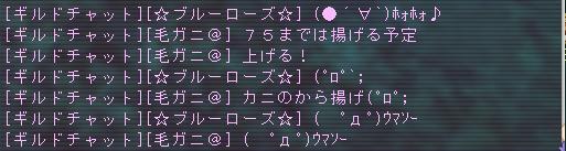 20061219121826.jpg