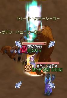 f07030606.jpg