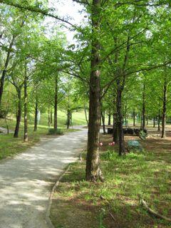 モネの庭7