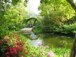モネの庭9