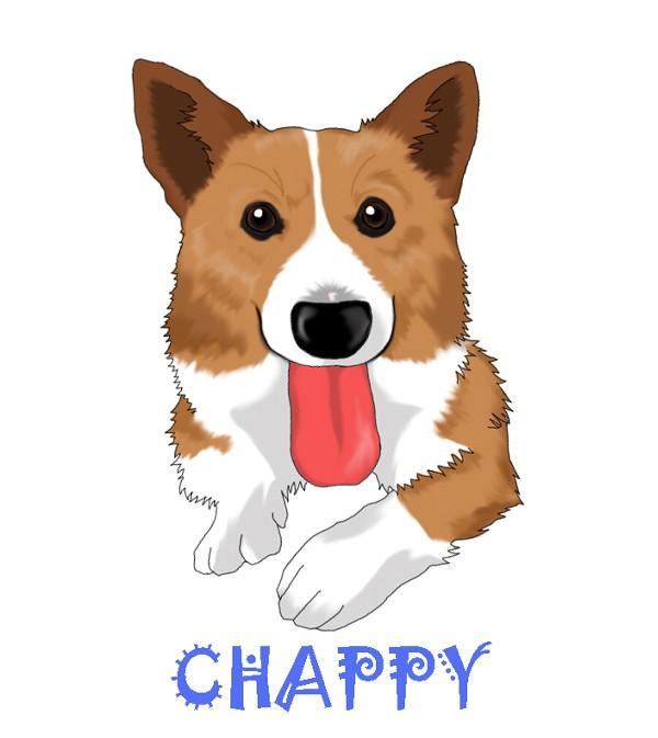 chappy01.jpg