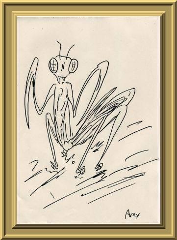 蟷螂(カマキリ)