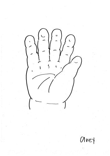 赤ちゃんの手のひら