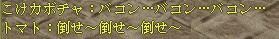 2005121024427.jpg
