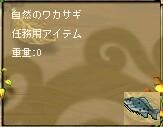 20063931051.jpg