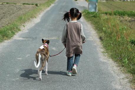 散歩に行くぞ