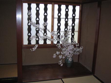 桜茶会 042shou