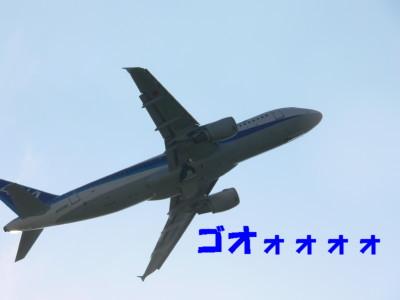 P1110487.jpg