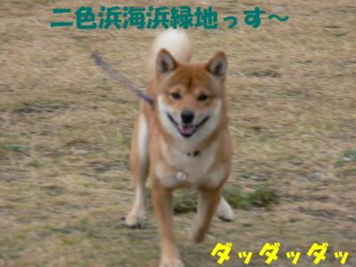 P1120961.jpg