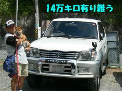 P1250049.jpg