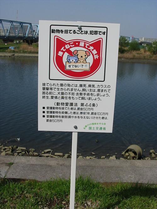 2007tamagawa-kannban2.jpg