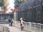 06_12_20_omiyakoen_zoo 049-thumb