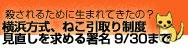 banner-small.jpg