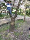 sumiyoshi_park2008_12.jpg