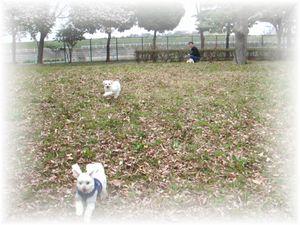 2008年 3月30日  お散歩