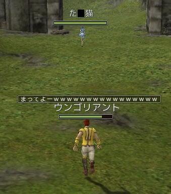 20070615_018.jpg