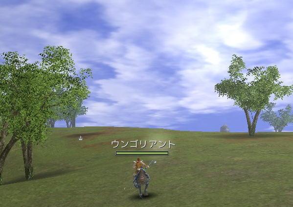 20071119_014.jpg
