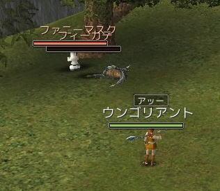 20071120_001.jpg
