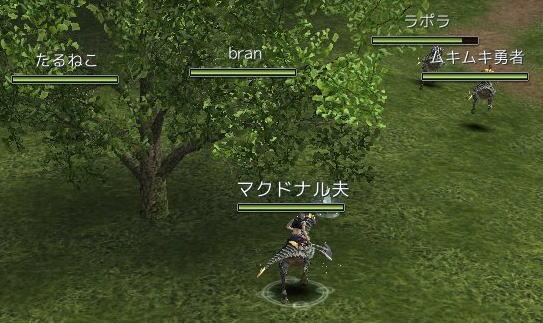 20071120_019.jpg