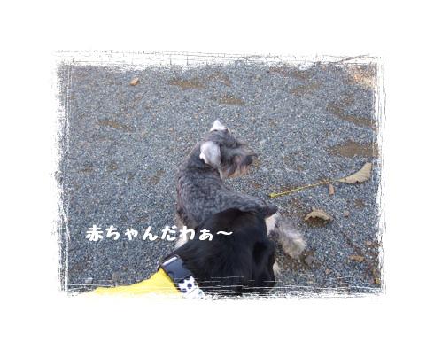 20071106190217.jpg