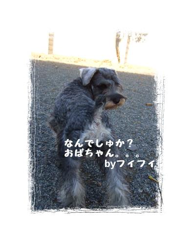 20071106190316.jpg