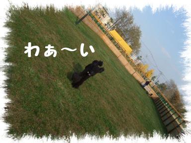 20071107193830.jpg