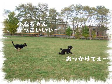 20071107194041.jpg