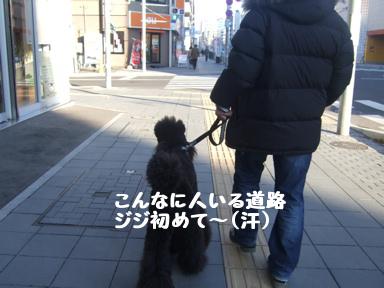 2007 11 22 プラネット②