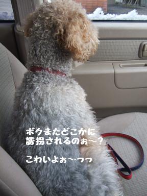 2007 12 2ロックくん①