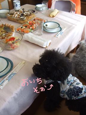 2008 1 16 ラビ家新年会⑧