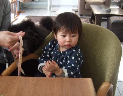 2008 2 12 ジジ2さいトノ&まるる①