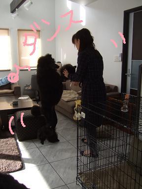 2008 2 12 ジジ2さいトノ&まるる②