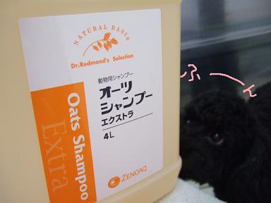 2008 3 14 パフ&クリンちゃん②