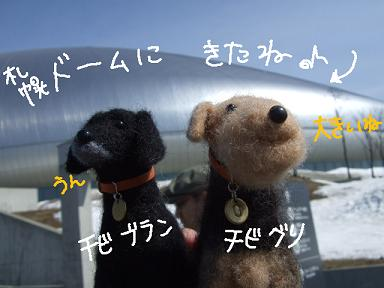 2008 3 22  お初ドーム①