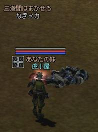 2005121301.jpg