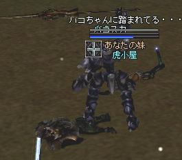 2005121604.jpg
