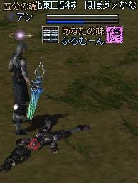 2006020201.jpg