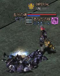 2006020302.jpg